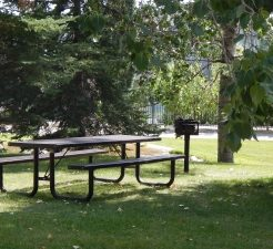 A Table and a Grill in the Park